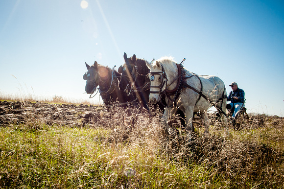 00193_heemsbergen-plowing_blackmountain_161022